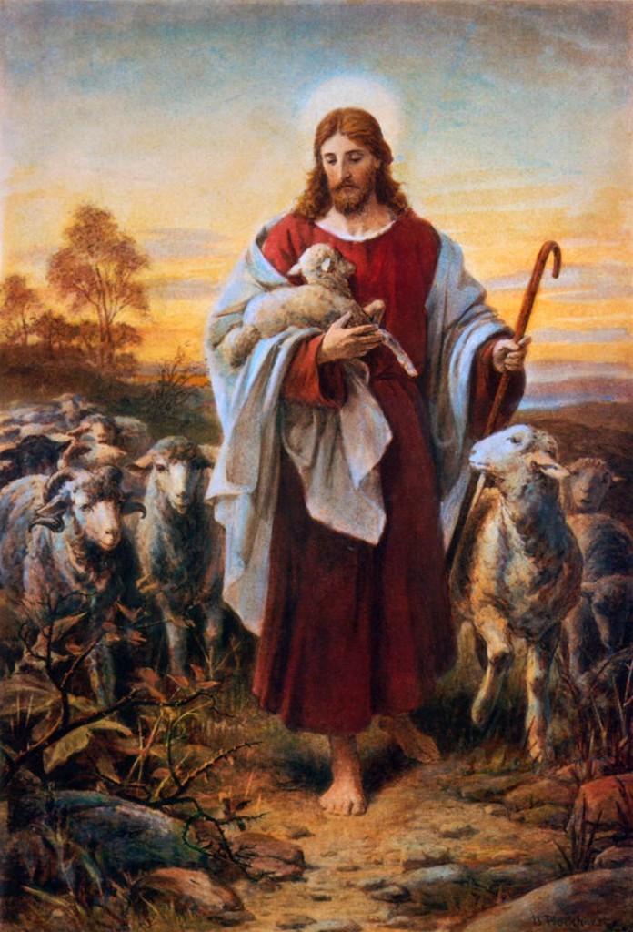 Shepherd - Jesus