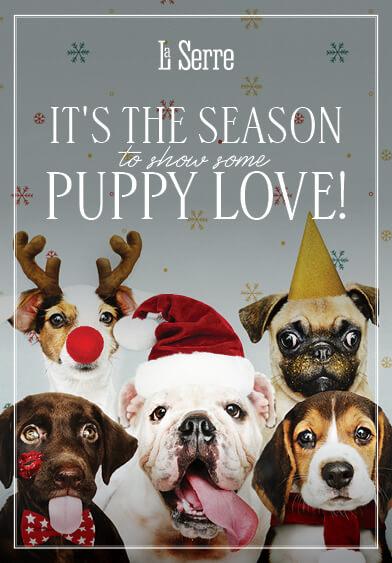 Puppy Love - La Serre