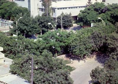 1973 Schutz Campus3