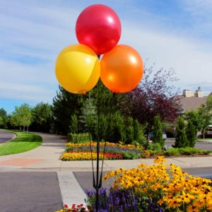 BalloonBobber Triple Cluster Pole Kit 1