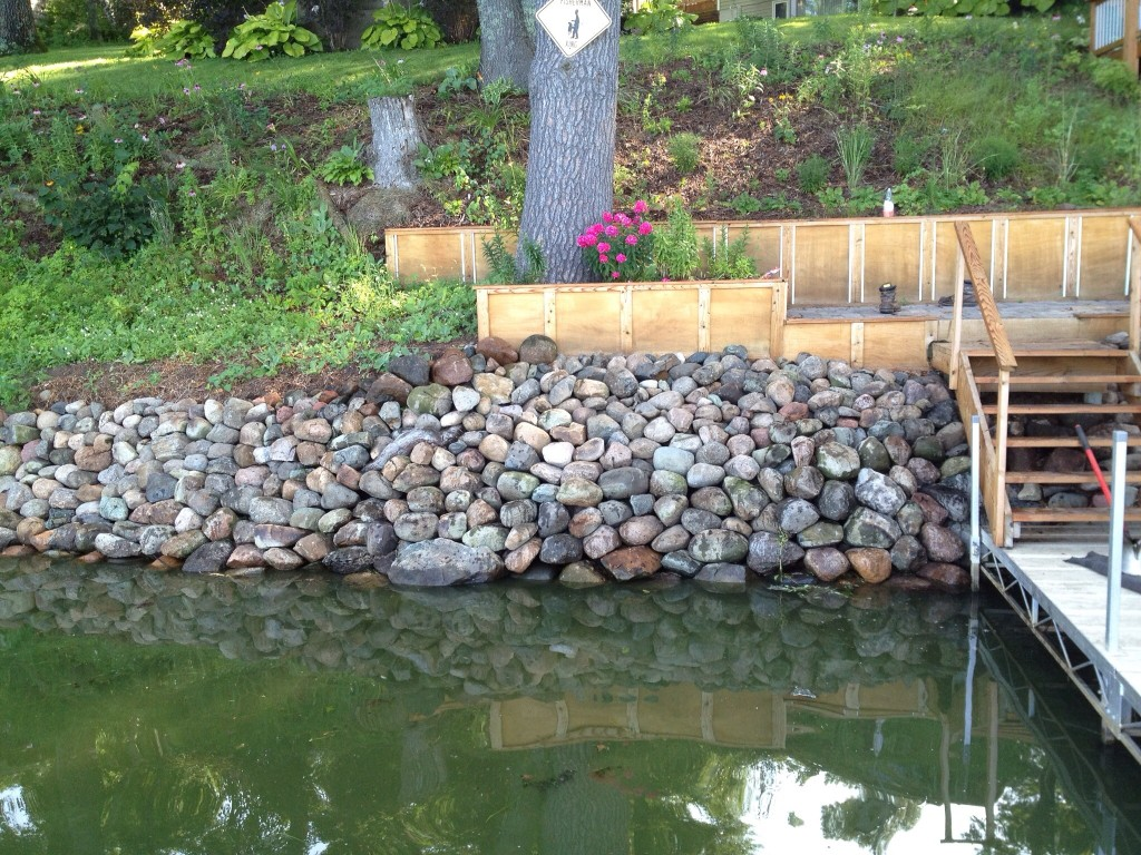 Shoreline Solutions: Native Shorelines vs.Riprap Shorelines