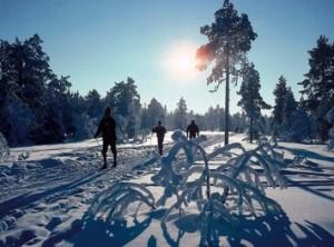 Cross Country Skiing Odell Lake Lodge & Resort
