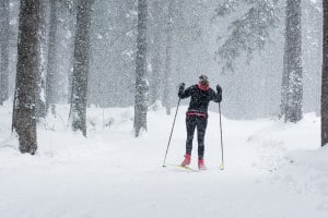 Cross-Country Skiing PAGE-shutterstock_250237798