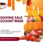 Thanksgiving Sale Promo Codes
