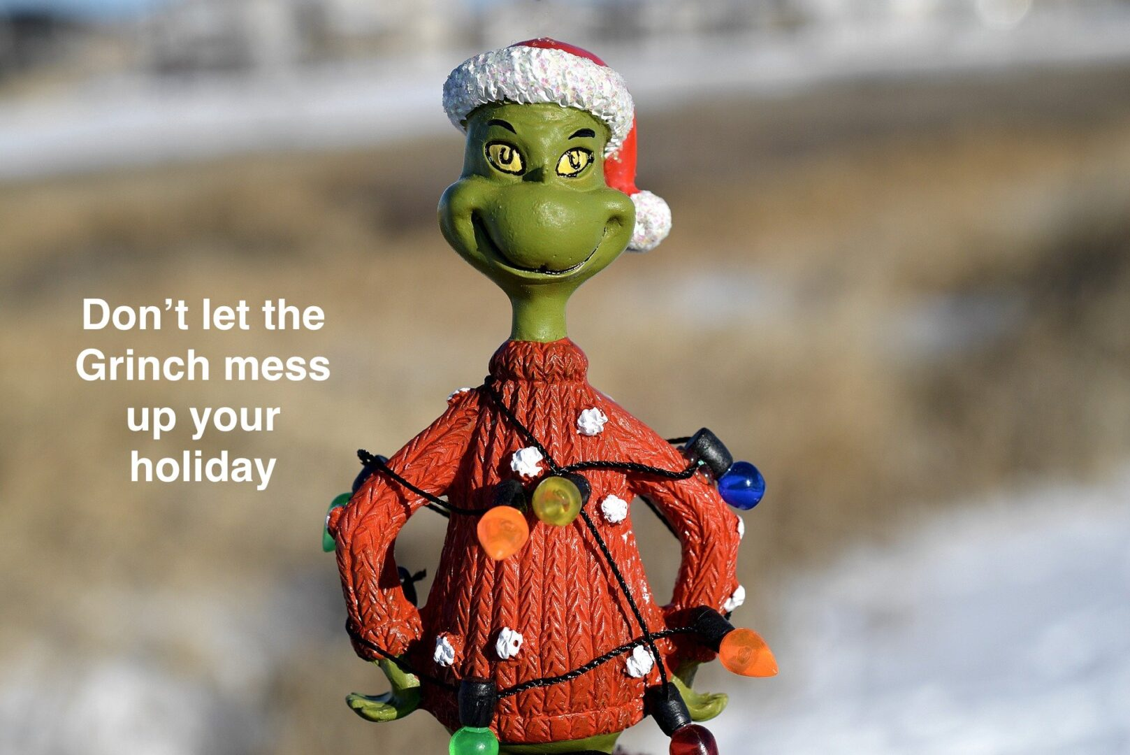 Don't let the Grinch mess up your holiday
