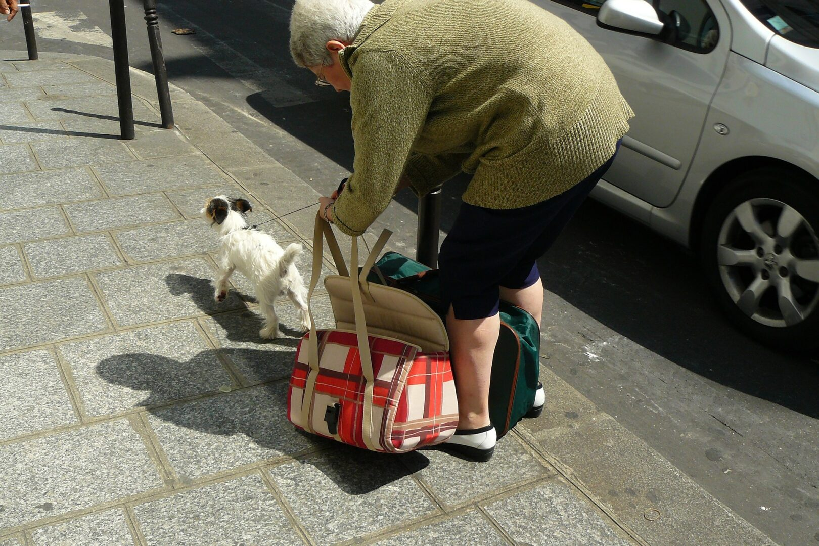 Older woman stooped over picking up bags with a small dog