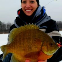 Choosing the Best Ice-Fishing Line for Panfish