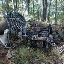12 Early Season Bow Hunting Mistakes