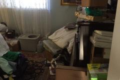 Bedroom Before #2.jpeg