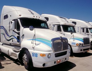 Fleet of Sharp Looking Semi-Trucks