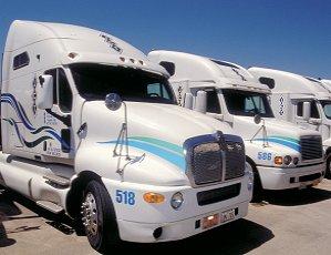 Fleet of Sharp Looking Semi-Trucks