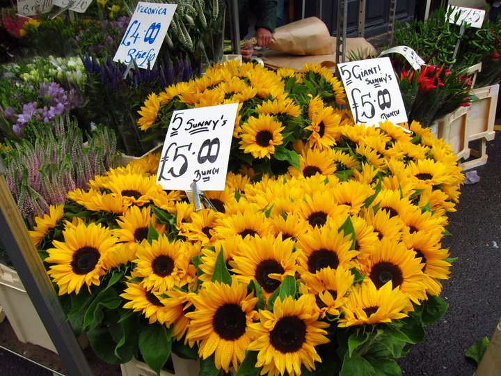 Sunflowers at the Columbia Road flower market, London