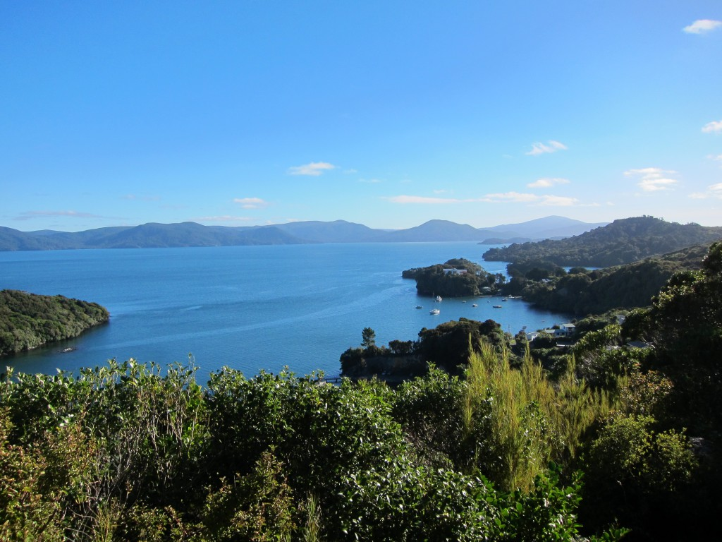 The Best Things to do on Stewart Island 1