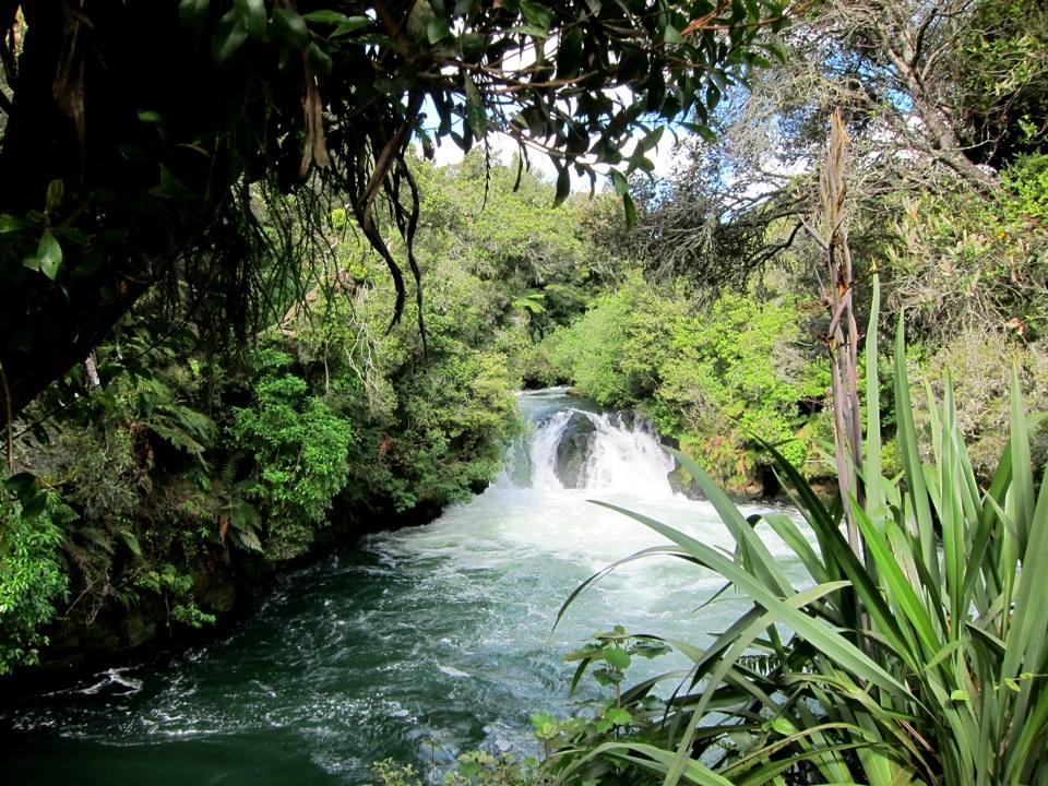 3 Ways to See Rotorua on a Budget 1
