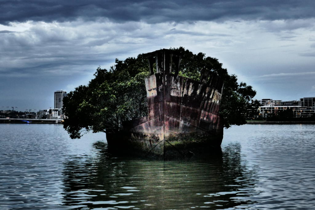 Alone with the SS Ayrfield Shipwreck, the Floating Forest of Sydney 1