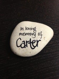 Our Legacy from a Special Boy Carter - Tony Curl