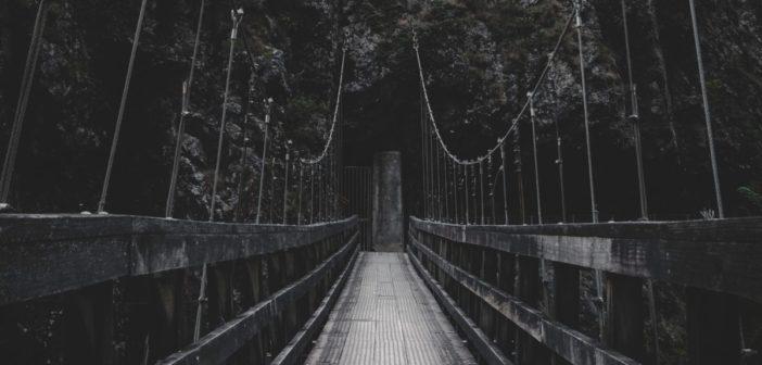 Liz Newman Reviews: A Review ofA Bridge Between Chaosby Alexa Gonzalez Bruno