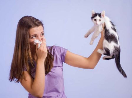 cats bad breath
