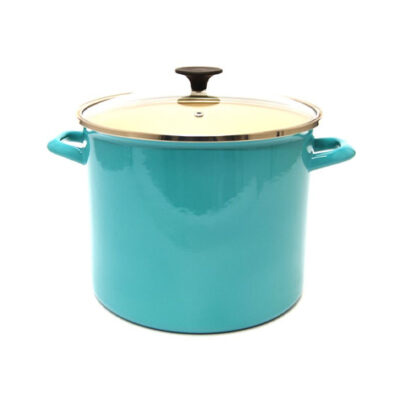 Starfrit 11.6qt Stock Pot with Lid Aqua <br>PRICE: $49.99 <br>UPC: 400000003566