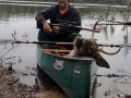 2020: Bill LaPann, of Argyle, with a buck taken near Sarana Lake.