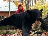 2018: Carlos Dubuque shot this monster sow  black bear during the early muzzleloading season out of Camp Squaw in Hamilton County.