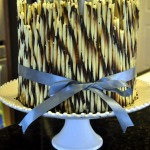 John's Second Birthday Cake ~ The Best Chocolate Cake Recipe {Ever} ~ Add a Pinch
