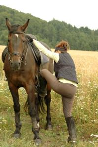 A woman climbing onto a horse.