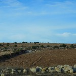 On the desert road from Marrakech to Essaouira