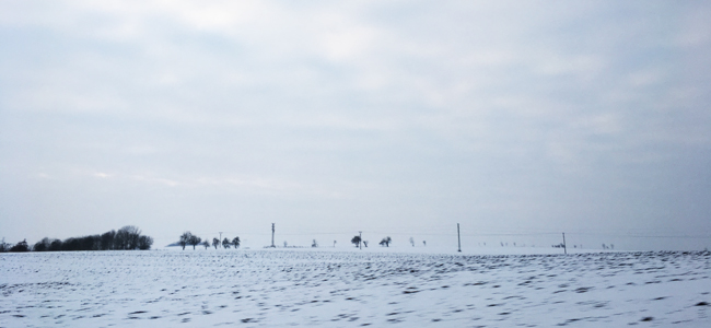 Monochrome winterscape on the journey to Kutna Hora.