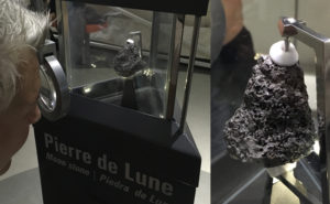 Moon rock. Could be a chunk of lava and we wouldn't have known any different.