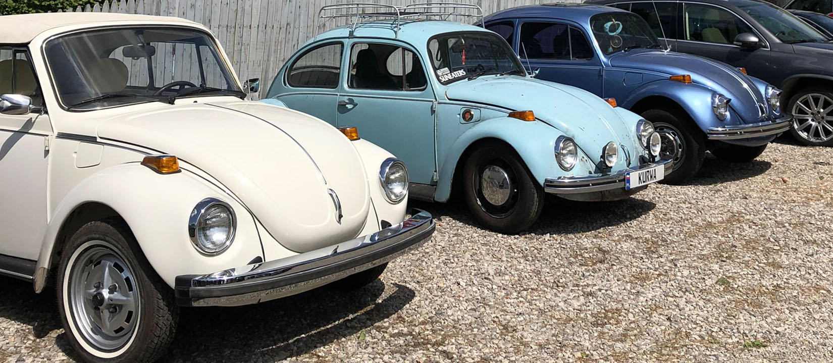 blue-and-white-beetles-for-carousel