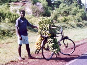 Man with matoke-laden bike