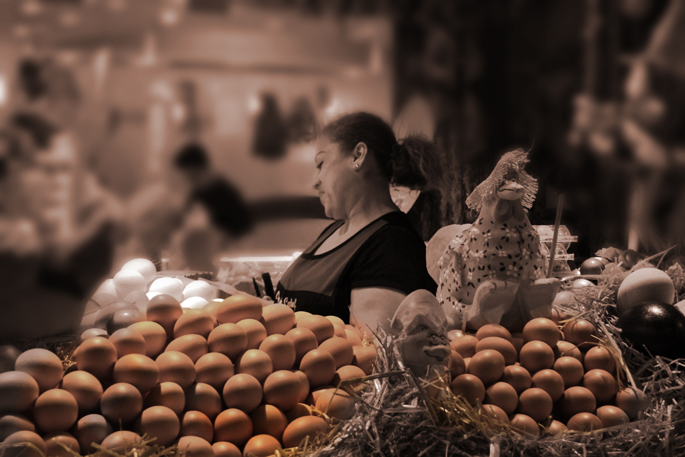 Egg Lady, Food for thought