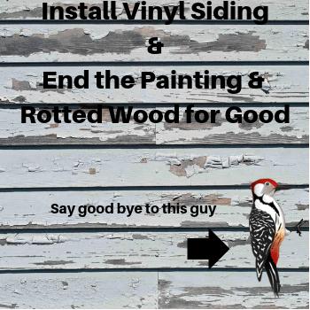 Vinyl Siding Helps Stop Woodpeckers