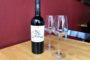 WINE SPECIAL: Carmenere INAMA–Veneto