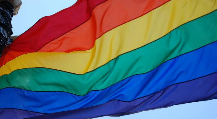 LGBTQIA Flag
