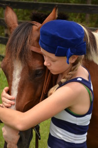 Horse Camp Horses
