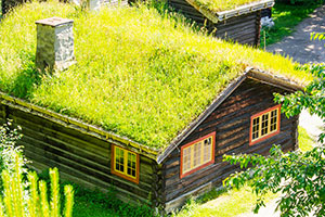 Green Roof Category