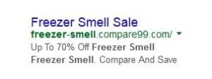 Freezer Smell