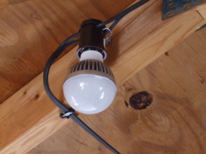 Bulb and Socket Front