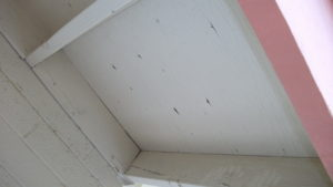 Typical Eave Box Before Any Work