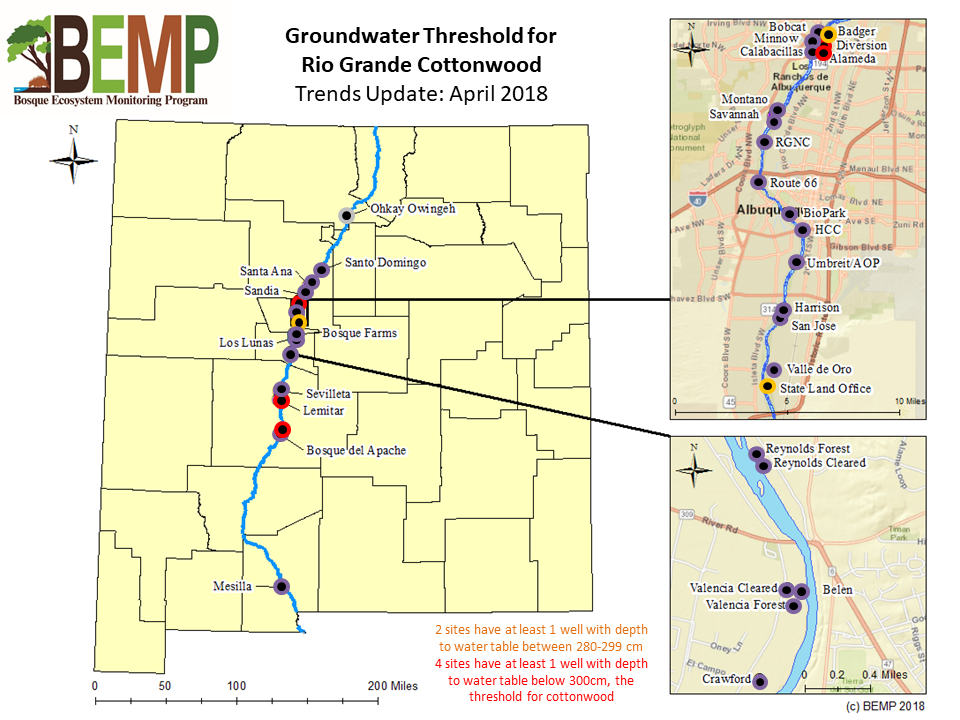 Groundwater Threshold for Rio Grande Cottonwood April 2018