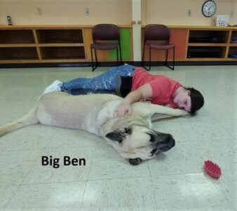 Big Ben snuggles with Whitney