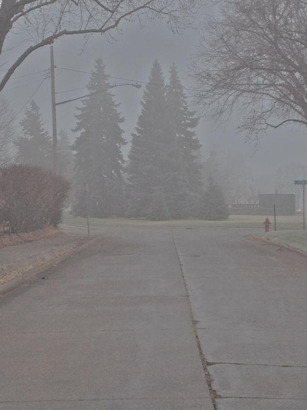fog4 | shorts and longs | julie rybarczyk