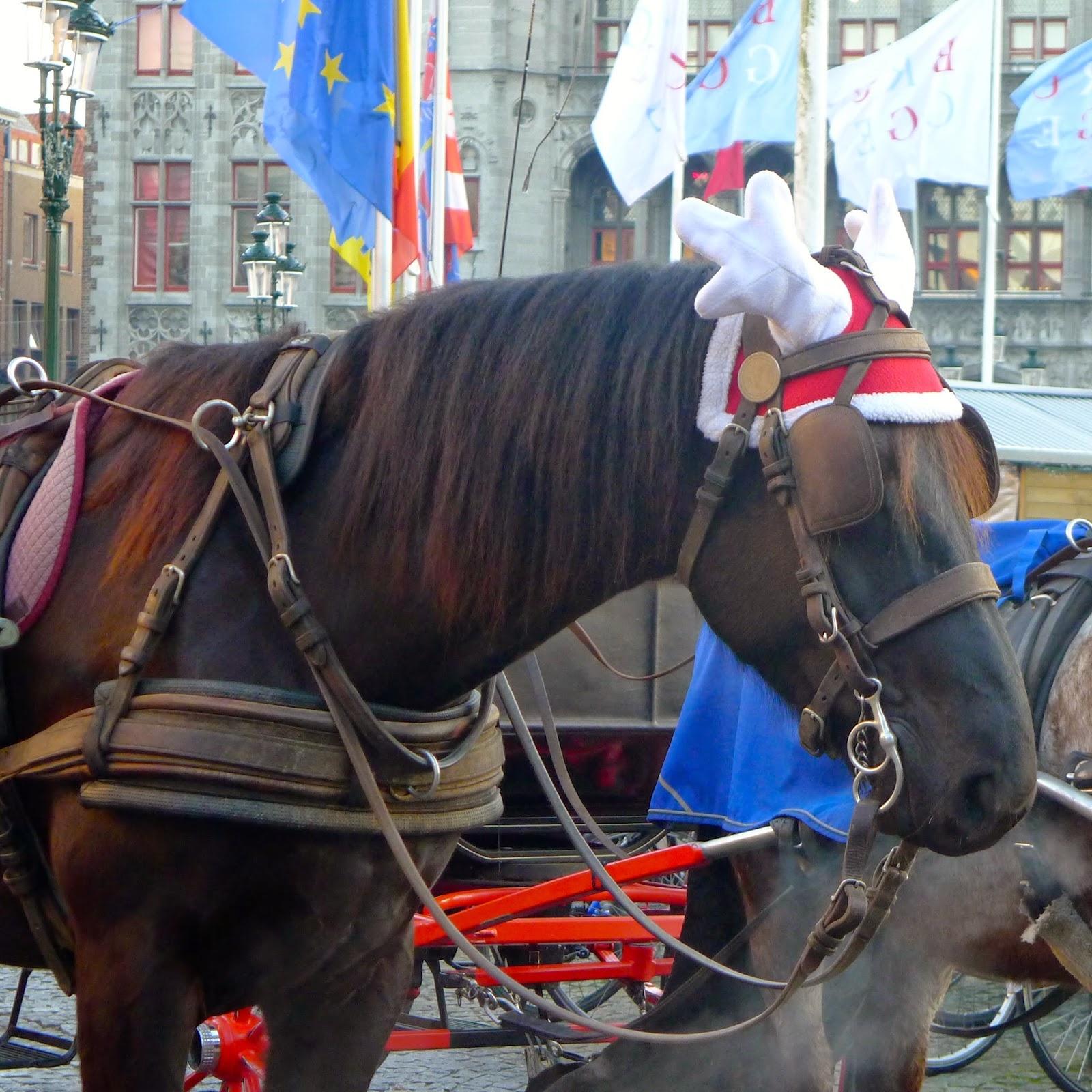 photo of Christmas horse
