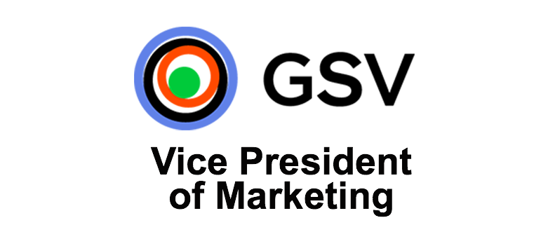 vice president digital marketing gsv