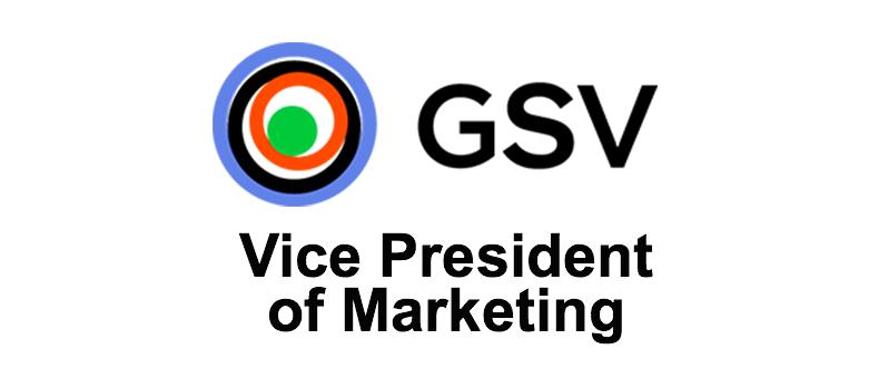 vice president digital marketing gsv