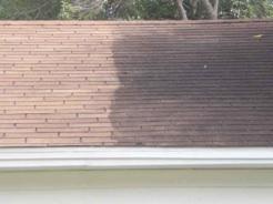 roof-clean-closeup