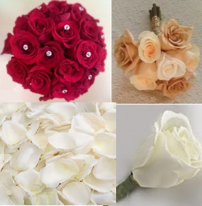 rose package pic