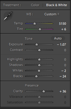 Lightroom Treatment Settings